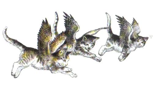 kanatlı kediler masalı