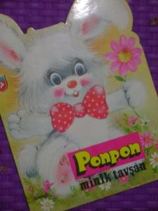 Dersini Alan Tavşan Ponpon